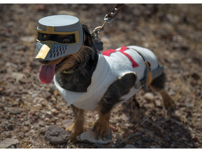 Deus Vult Dog: The Costume