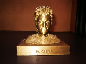 Bust of Marie Curie