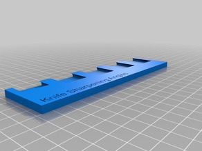 Knife sharpening angle guide blocks with holder