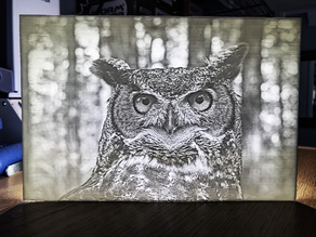 Great Horned Owl Lithophane