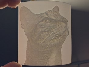 Savannah Cat Lithophane