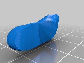 3D scan of a foot