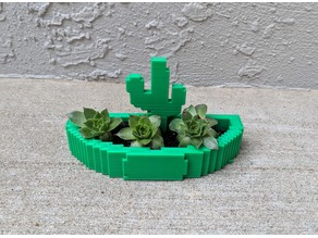 Cactus Planter or Jewelry Holder