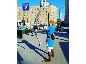 The Legend of Zelda: Breath of the Wild arrow