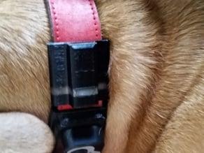 Fitbit Flex - Dog Collar Attachment