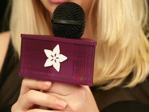 LED Microphone Flag