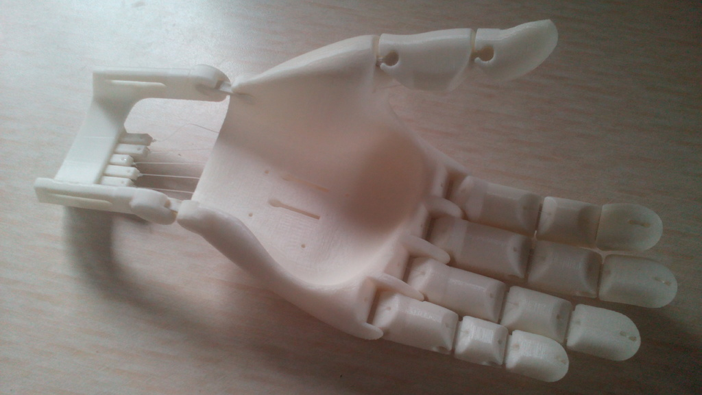 Flexy-Hand 2 by Gyrobot - Thingiverse