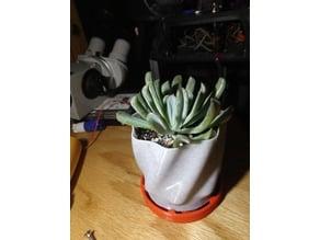flower pot 2