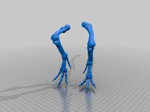 T-rex legs