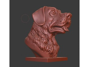 Labrador Retriever bust (Dog head)