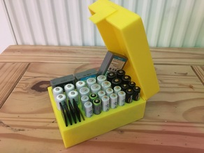 Battery and SD Card Organiser