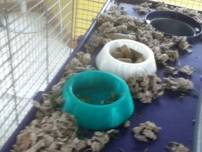 Rat or Mouse Bowl