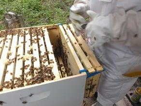 Beehive Frame Hook