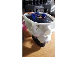 Tomm's  3 Axis Talking Skull