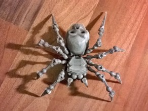 Articulated Spider