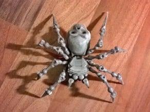 Articulated Spider