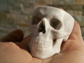 Cool Hollow Skull
