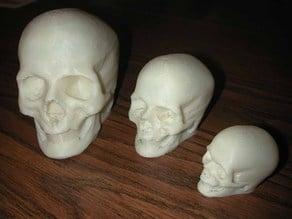 Elvis, the Printable(?) Skull