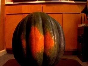 Acorn squash 2013-10-29 01.51 PM