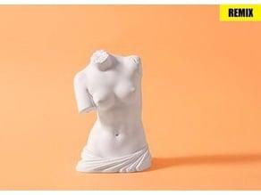 Venus de Milo - torso