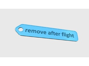 remove after flight