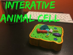 Multi-Layer Interactive Animal Cell