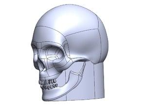 skull konb