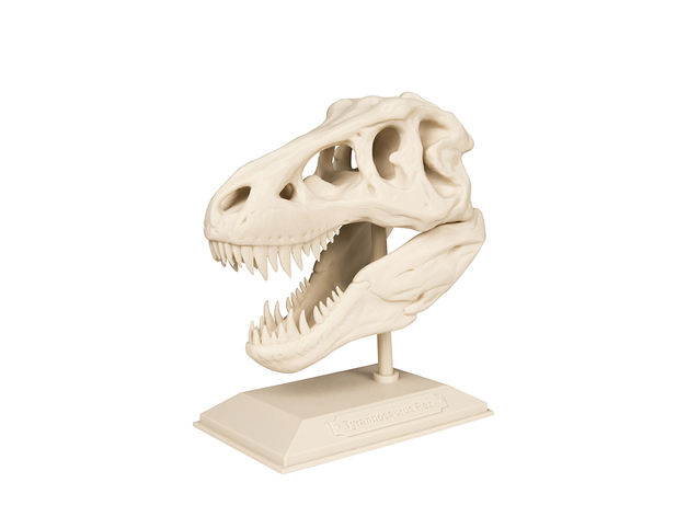 The T-Rex Skull by MakerBot