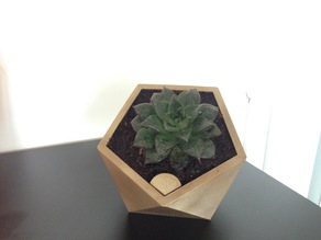 Penta self watering flower pot