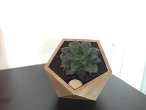 Penta self watering flower pot
