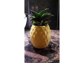 Pineapple Pot