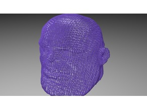 Thanos WireFrame Head