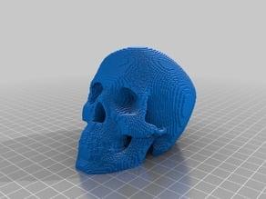 Voxelized Human Skull