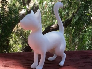 Cat (standing up)