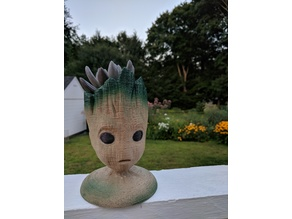 Groot Head Planter Stable