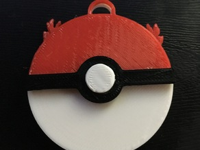 Pokeball and team keychain/ token