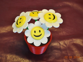 Smiley Face Flowers and Flower Pot