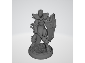 RPG Miniature - Paladin or Cleric