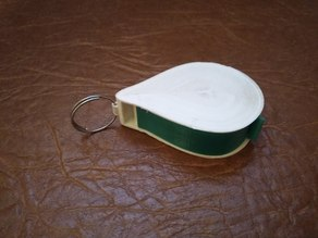 Dry fuel case keychain