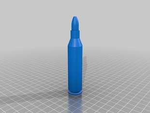 .223 live ammo