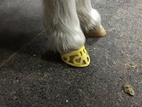 Horse hoof ornament