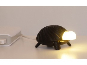 Lighting turtle