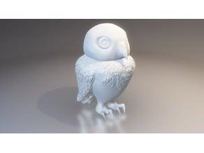 Little Owl (HighPoly)
