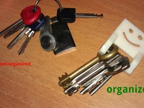 Organized keys holder