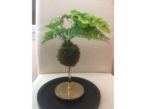 Kokedama with central-watering