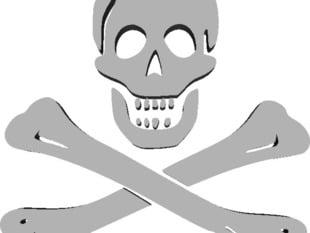 Skull and Bones (Jolly Roger)