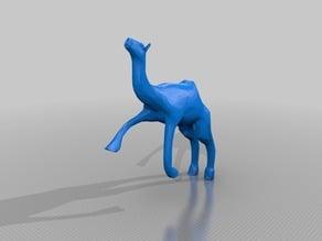 camel jump