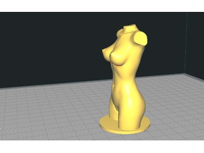 Woman Body with or without base