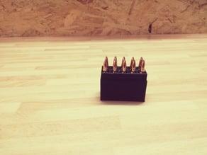 .223 Ammo Box (10)