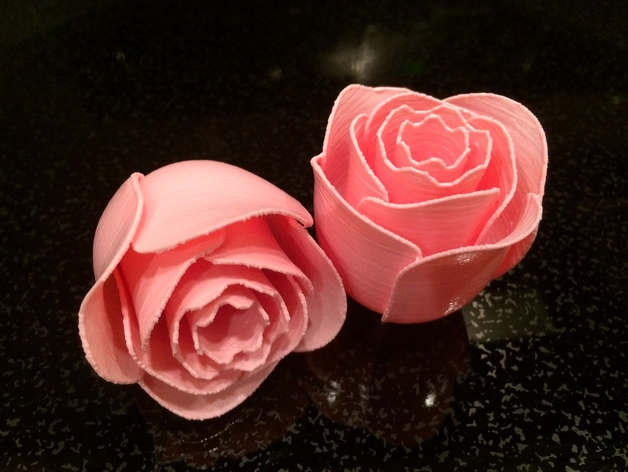 photograph about Printable Rose called Printable Rose Flower through Jerrill - Thingiverse